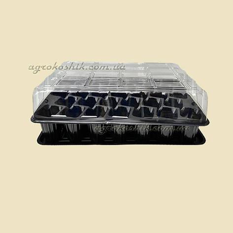 Минипарник 33 ячейки (+ поддон и крышка), фото 2