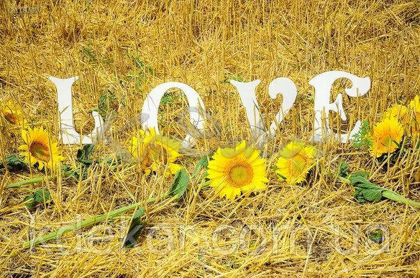Буквы LOVE (высота 25см.) заготовка для декора