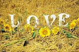 Буквы LOVE (высота 25см.)№1  заготовка для декора, фото 2