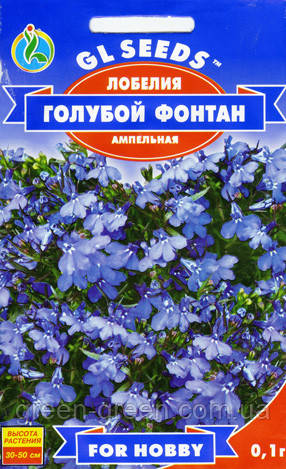 Лобелия свисающая голубой фонтан