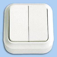 А56-134 Выключатель двойной наружный Пралеска Bylectrica белый