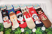 Дитячі шкарпетки махрові новорічні EKMEN 6-7
