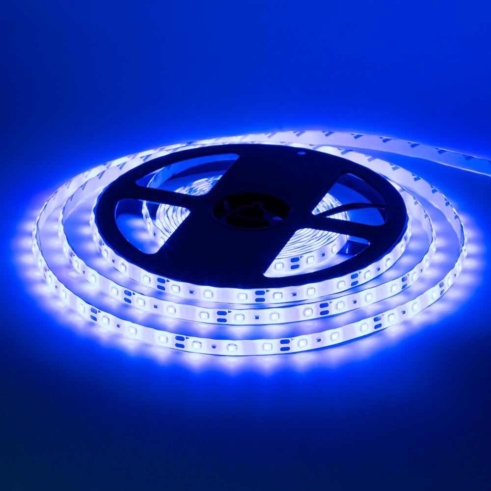 Світлодіодна стрічка 12V синя smd2835 60LED/m IP65, 12В бобіни за 5 метрів