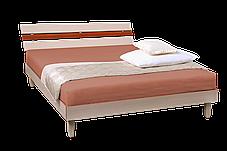 Кровать (ДСП) Прагматик-Микс дуб молочный+яблоня (Comfoson ТМ), фото 2