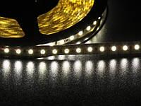 Светодиодная лента 3528 120 LED белая 5.0-5.5 Lm/LED IP33