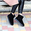 Натуральная замша черные замшевые женские низкие угги зимняя классика, фото 4