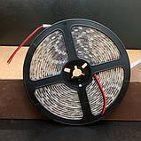 Світлодіодна стрічка BIOM V2 SMD5050-60 IP65 Стандарт Х-БІЛА 1м, фото 3