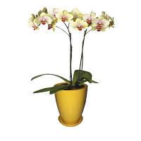 Горшок для цветов Глянец (высокий) d-15,h-19см,v-2,3л (желтый)