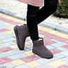 Модні низькі бежеві мокко замшеві жіночі низькі уггі натуральна замша, фото 3
