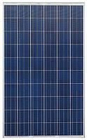 Солнечная батарея поликристаллическая Progeny Solar PS240p