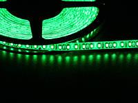 Светодиодная лента 3528 120 LED зеленая 4.0-4.5 Lm/LED влагозащищена IP65