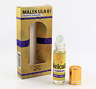 Незвичайні парфуми Molecule 01 Al Rayan