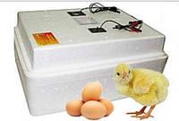 Инкубатор Несушка БИ-1 (БИ-2) автомат, аналоговый на 63 яйца + аккумулятор, фото 1