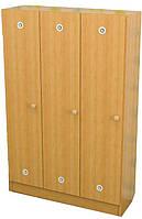 Шкаф детский для раздевалки (3 секции)