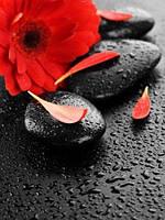 Панно Цветок на камне кафель фотопечать, плитка 20х30см.
