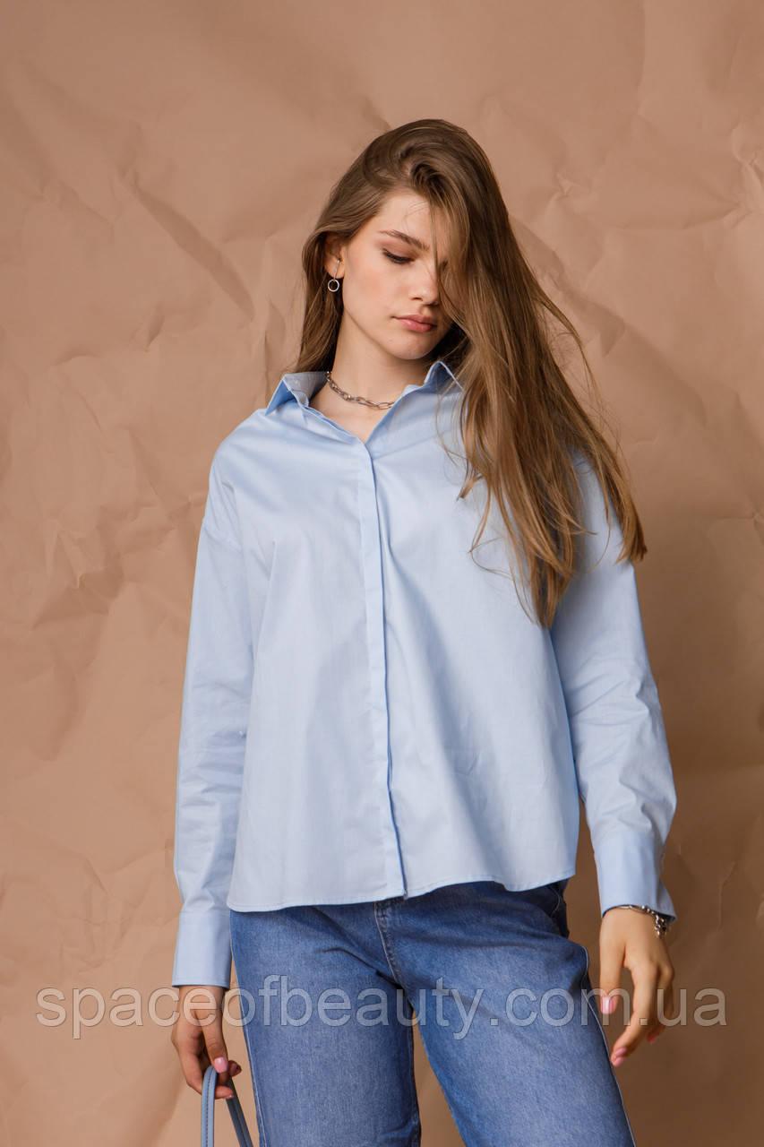 Жіноча сорочка Stimma Агура 8114 M Блакитний