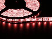 Светодиодная лента 5050  60 LED красная 10.0-12.5 Lm/LED влагозащищена IP65