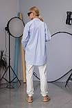 Женская рубашка Stimma Cабэсти 7643 Xs Голубая Узкая Полоска, фото 2