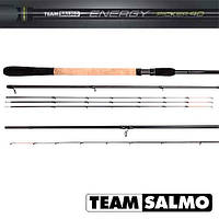 Удилище пикер. Team Salmo ENERGY Picker 40 3.00