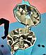 Гейзерна кавоварка Edenberg EB-3783 з литого алюмінію 450 мл 9 чашки | турка Эденберг, фото 5