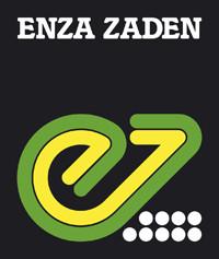 Насіння овочів від Enza zaden (Енза Заден)