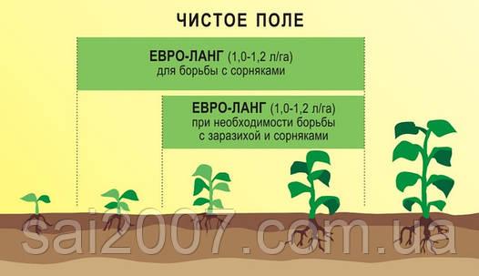 Гербицид ЕВРО-ЛАНГ