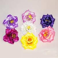 Головки цветов (пресс-цветок)
