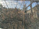 Коричневый гранит Жадани, фото 3