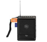 Портативный радиоприёмник NS-018U  *1312