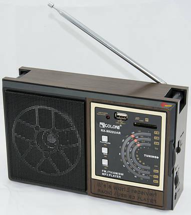 Портативный радиоприемник GOLON RX 9922, фото 2