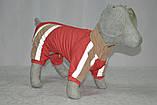Комбінезон для собаки на синтепоні Зоря теплий ск4, фото 4