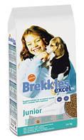Brekkies Dog Junior Сухой корм для щенков 20кг