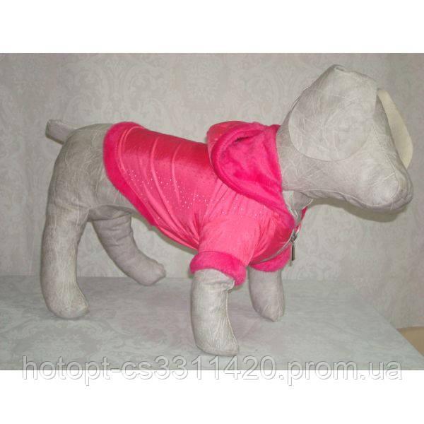 Курточка для собаки Сильвер ск4