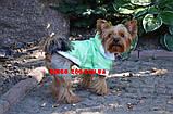 Курточка для собаки Сильвер ск4, фото 3