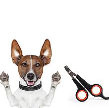 Кусачки когтерез ножницы для когтей собак, кошек, мелких животных и птиц