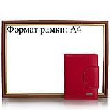 Кошелек или Портмоне Canpellini Кошелек женский кожаный CANPELLINI SHI967-172, фото 10