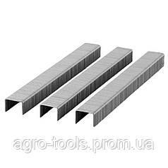 Скобы 8×12.8мм для пневмостеплера 5000шт SIGMA (2817081)