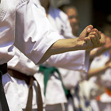 Товары для боевых искусств, общее