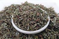 Иссоп лекарственный трава Карпаты 50 гр SP, КОД: 2650896