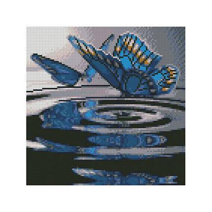 Алмазна вишивка (мозаїка) 30x30 см Метелики на воді Strateg, фото 2