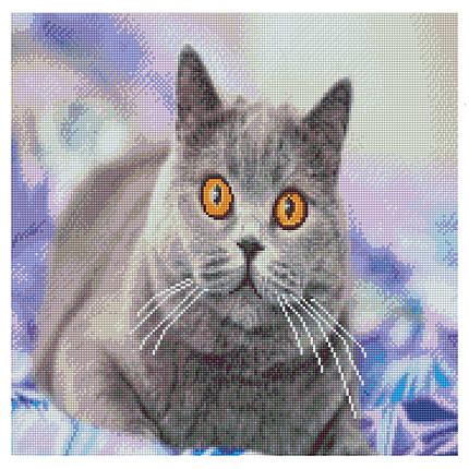 Алмазная вышивка (мозаика) 50x50 см Заинтересованный серый кот Strateg, фото 2