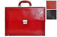 Кожаный женский портфель Stefania B865 DWL