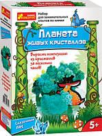 Научные развлечения.Планета живых кристаллов 0362 Ранок Украина