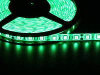 Светодиодная лента 5050  60 LED зеленая 10.0-12.5 Lm/LED влагозащищена IP65