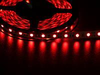 Светодиодная лента 5050  60 LED красная 10.0-12.5 Lm/LED IP33