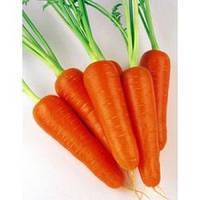 Семена моркови ранней Абако F1, Seminis (Нидерланды), 1 млн (1,8 - 2,0) семян