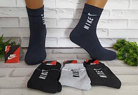 Носки мужские махровые р. 40-44 спортивные средняя длина за 1 пару F0105-1