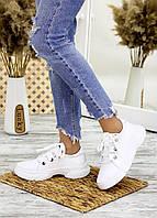 Кросівки шкіряні білі 7703-28, фото 1
