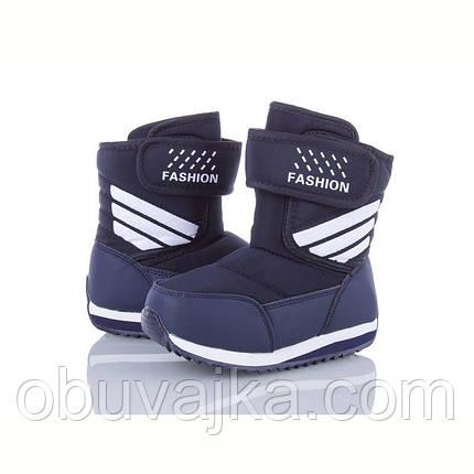 Зимове взуття оптом Дутики для дітей від фірми Alemy Kids (27-32), фото 2