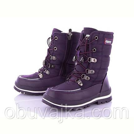 Зимняя обувь Детские дутики 2021 от фирмы  Alemy Kids (27-32), фото 2